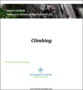 ClimbingPilot
