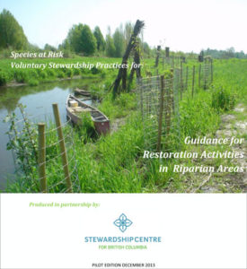 Restoration Activities in Riparian Areas Pilot