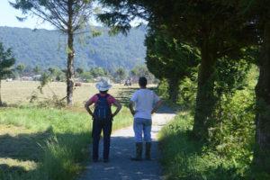 Stewardship-Practices-(sm)