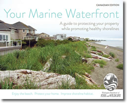 MarineWaterfront_CDNed